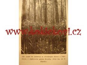NAPOJME PRAMENY V. ÚLEHLA PRAHA 1947