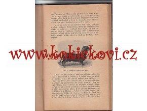 STRUČNÝ POPIS DRUHŮ PSŮ PŘEPYCHOVÝCH A UŽITKOVÝCH 1909