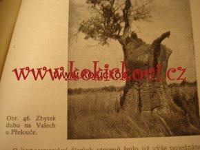 Ošetření starých stromů - Frič 1953