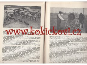 PĚSTOVÁNÍ BRAMBOR 1958 AKADEMIK J. ŠIMON
