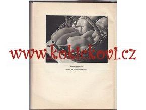 Fotografický obzor 1930 - HLUBOTISK FOTOGRAFIE KOBLIC LANGHANS JÍRŮ HACKENSCHMIEDT AJ.