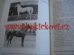 Zootechnika pre veterinárnych medikov - Gabriš Brauner slovensky chov koní ovcí psů prasat ... 1987