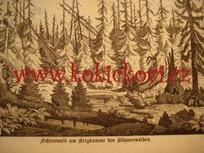 1860 Böhmerwald ŠUMAVA - KNIHA O ŠUMAVĚ Z ROKU 1860. UVNITŘ RAZÍTKO VOJTA NÁPRSTEK