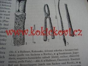 Základy slovanského železářského hutnictví v českých zemích - Radomír Pleiner - hutnictví - železářství