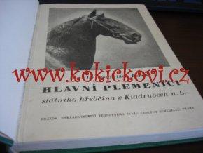 Hlavní plemeníci - hřebčín Kladruby n.L. František LERCHE 1951 - věnování a podpis autora !