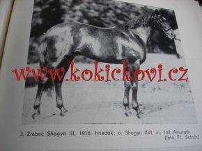 Plemenná kniha čistokrvných arabských koní chovaných v plemenárskom podniku v Topolčiankach