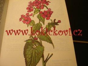 Kapesní atlas - Rostliny polí a zahrad
