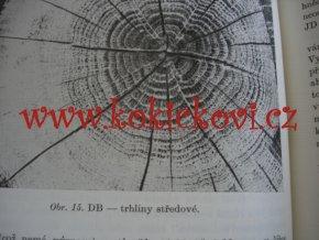 NAUKA O MATERIÁLU - učební obory zpracování dřeva - vlastnosti dřeva