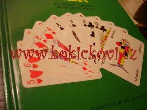 100+1 karetních her
