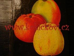 Apfelsorten – odrůdy jablek 1984 Petzold