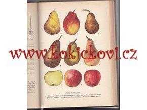 R. Šrot a kol. 1000 dobrých rad mladým ovocnářům, květinářům, zelinářům, pěstitelům, pokusníkům
