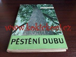 Pěstění dubu - Vyskot