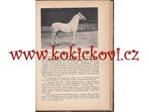 Státní hřebčín v Topolčiankách - Dr. Karel Sejkor - 1938