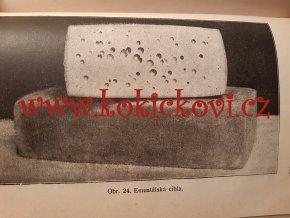 Výroba sýrů v českých družstevních mlékárnách na Moravě  - 1924