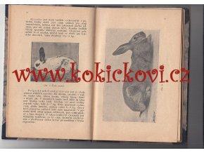 PRAKTICKÝ KRÁLÍKÁŘ - TÁBORSKÝ-ROSICKÝ KRÁLÍKÁŘSTVÍ 1918