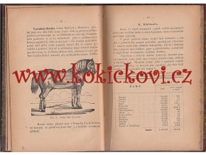 Pojednání o chovu a plemenění koní a podvodech, jakých se užívá při obchodu s koňmi UHERSKÉ HRADIŠTĚ 1886