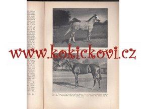 UČEBNICE OBECNÉ ZOOTECHNIKY 1. DÍL 1933 FRANTIŠEK BÍLEK