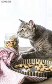 Pamlsky pro kočky