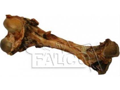 sušená kost pro psy