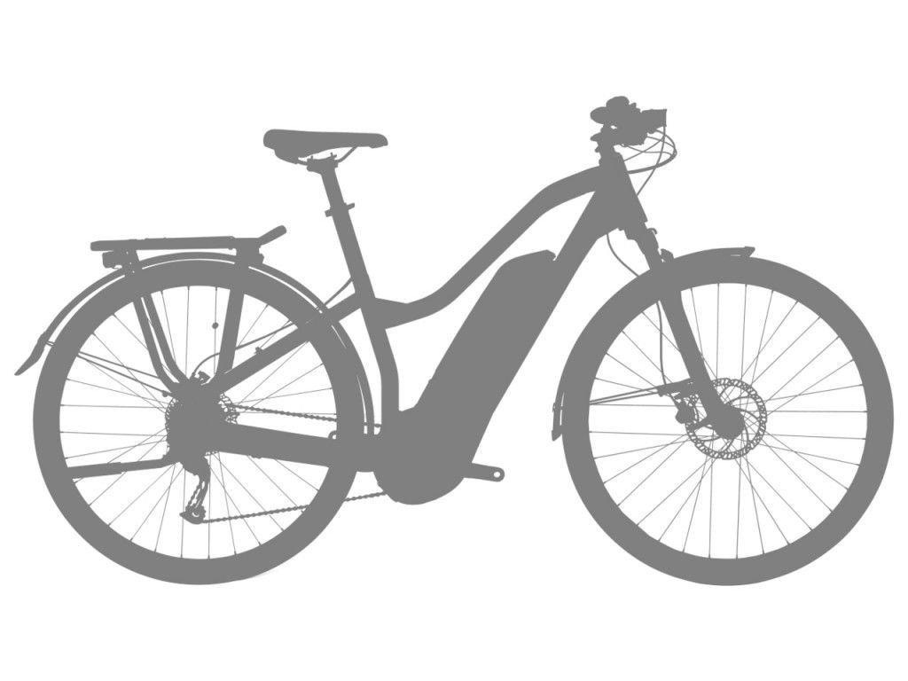 Trekingové elektrokolo Haibike SDURO Trekking 1.0 dámské - 2020 - Bosch Active Plus