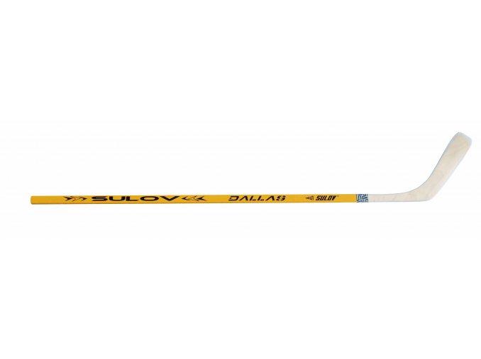 hokejsul125ldy sulov dallas