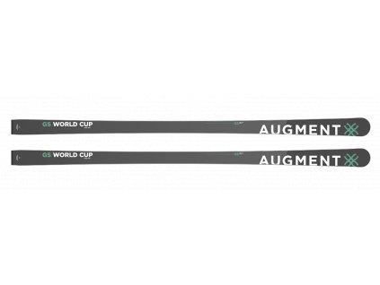 GS WC length length 193, GS WC ,Radius 30 19/20 Délka lyže 193