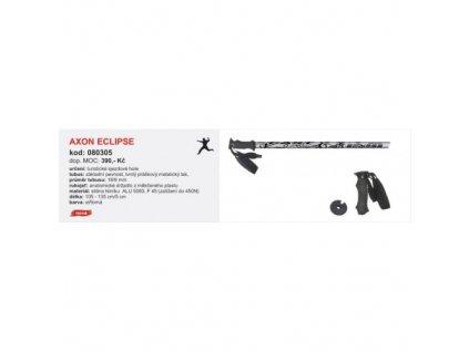 Sjezdové hole Axon ECLIPSE stříbrné
