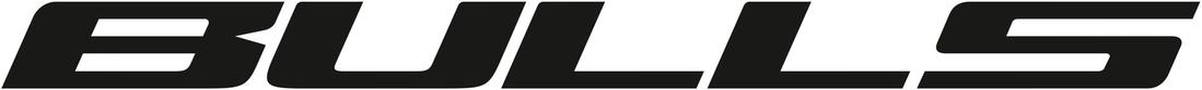 BULLS_logo_horizontal.5b2bb76308bf3_1