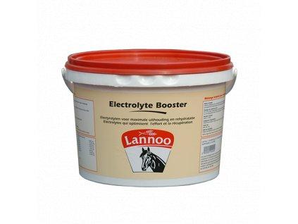 electrolyte boostercutout