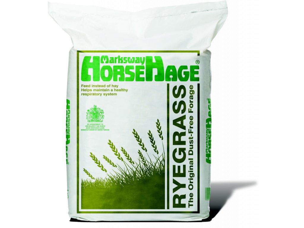 horsehageryegrass