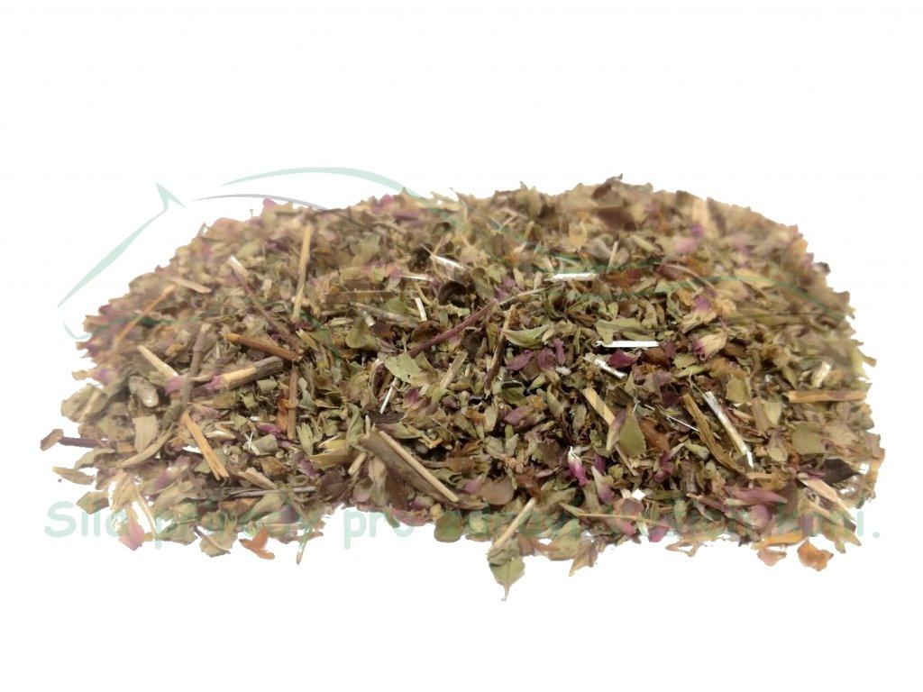 Dobromysl obecná (nať) Origanum vulgare L. 1kg