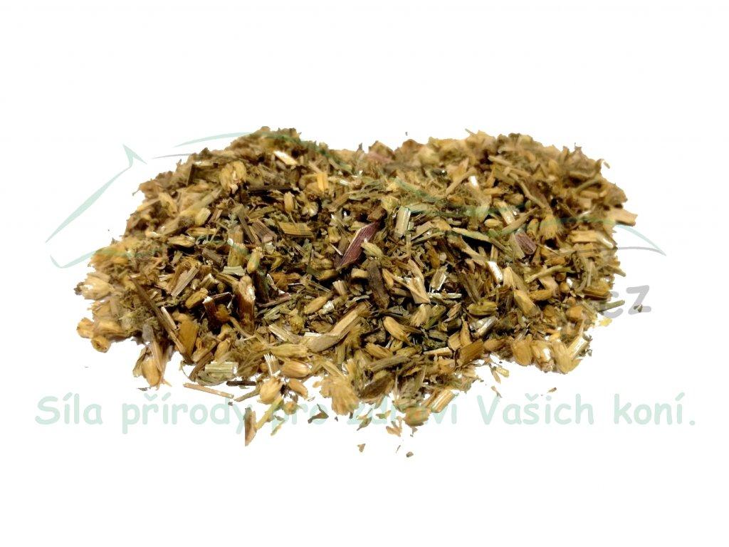 Řebříček obecný (nať) Achillea millefolium L. 1kg