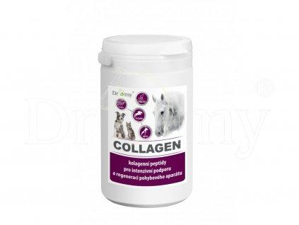 264 collagenv