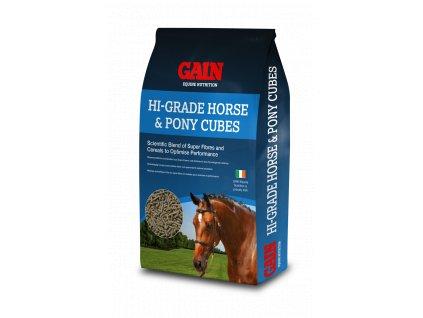 High Grade Horse