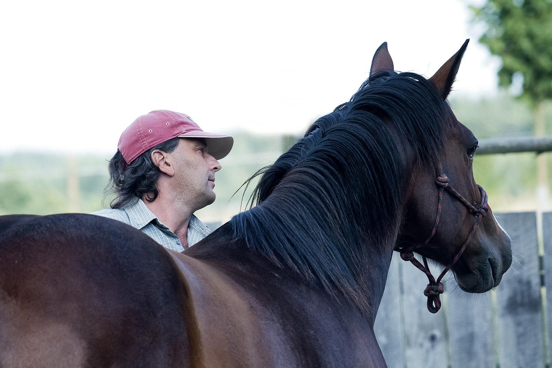 Bořánek: Kůň s dobrým pocitem bezpečí se neleká. Tečka.