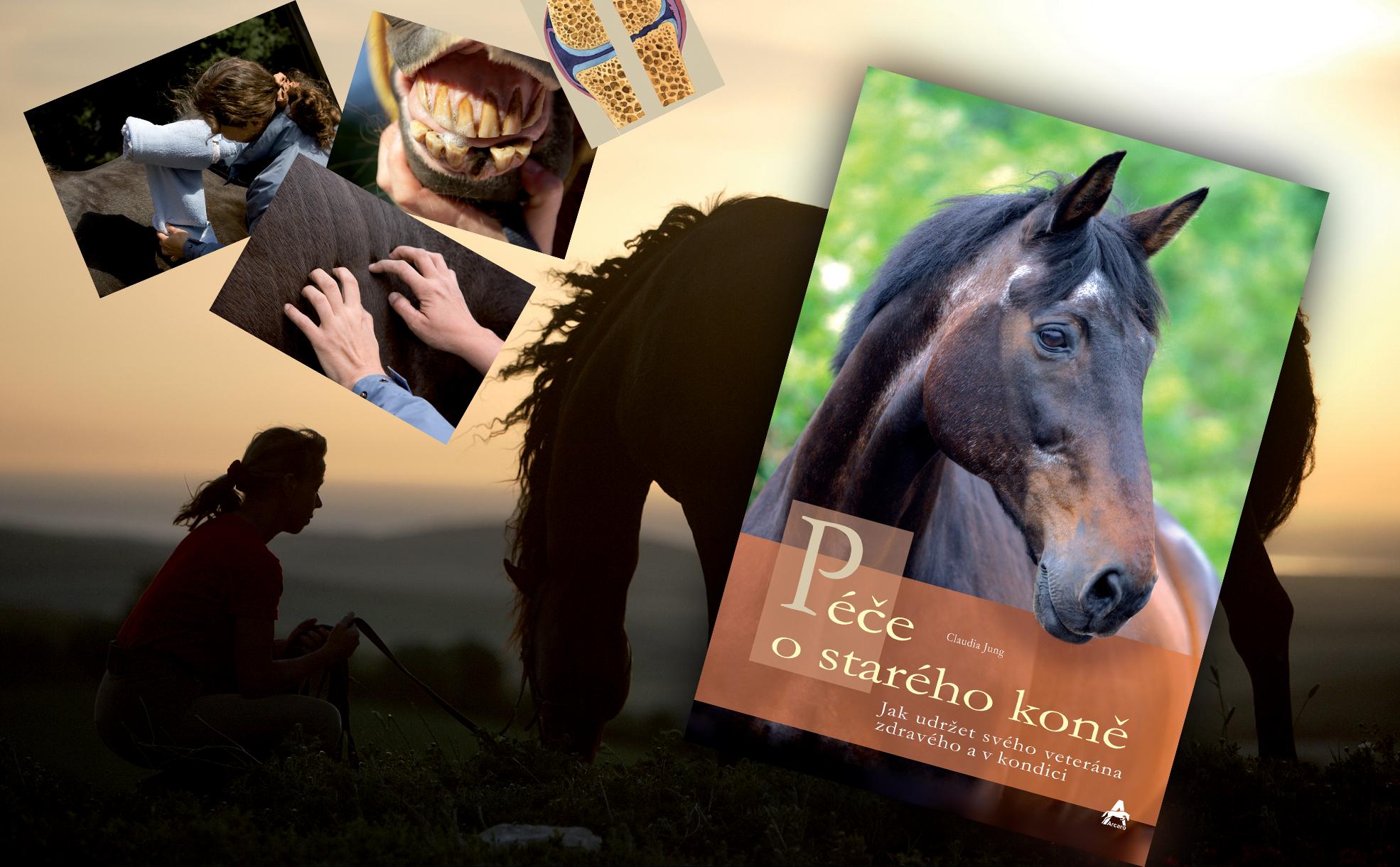 Péče o starého koně (Claudia Jung)