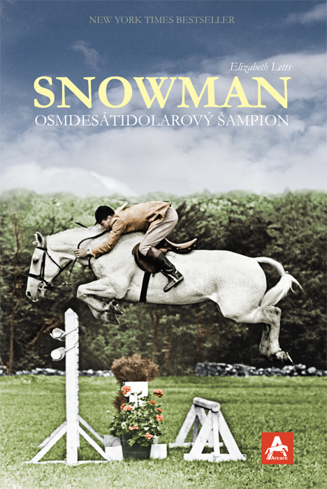 Snowman_obalka