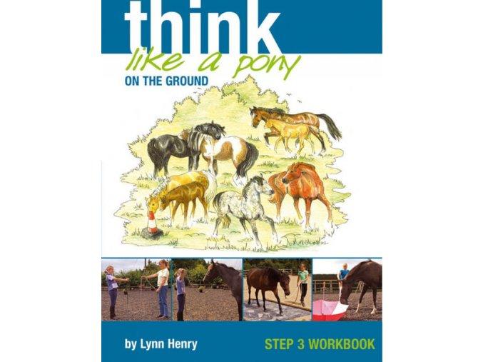 Think Like a Pony on the Ground 3