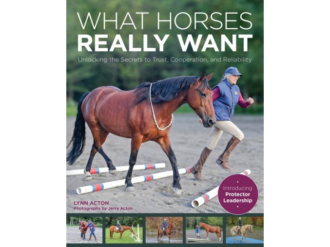 What Horses Really Want