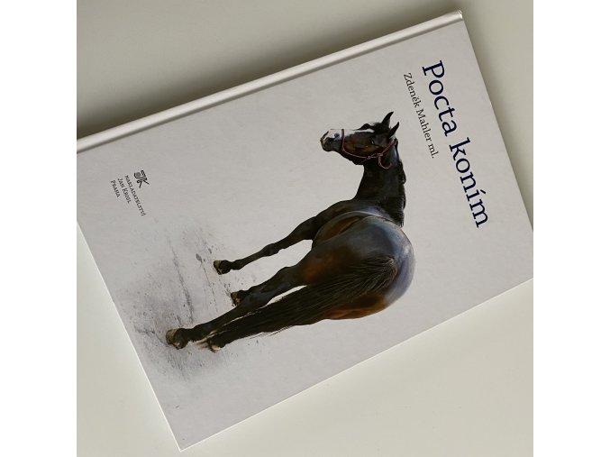 Pocta koním - Poškozený kus (Zdeněk Mahler)