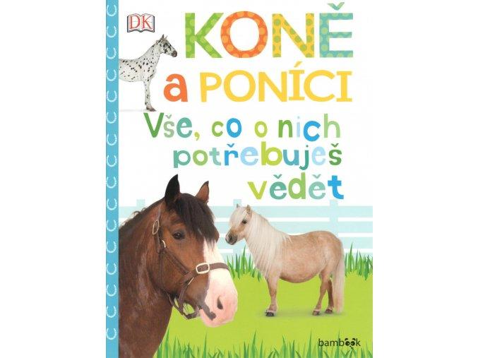 kone a ponici