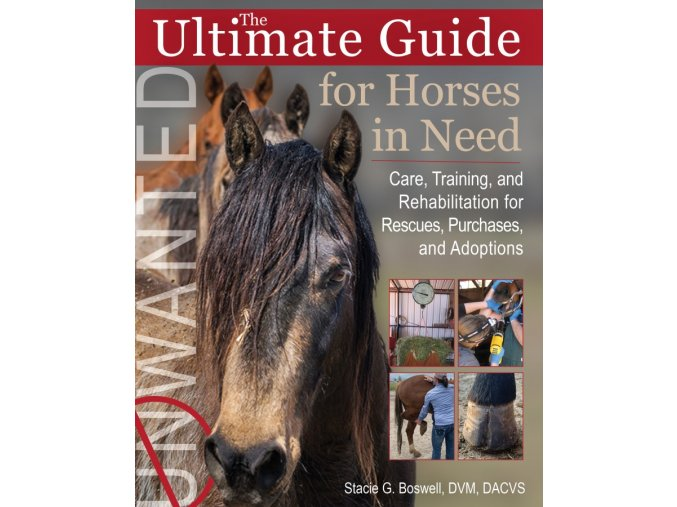 Ultimate guide for horses in need