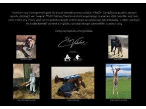 Charitativní kalendář Muži & koně (Elis Váchalová)