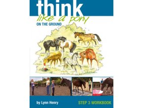 Think Like a Pony on the Ground 3