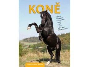 rubico kone
