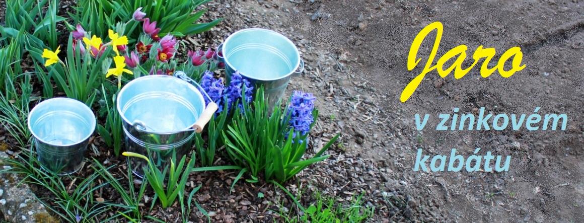 Jaro v zinkovém kabátu