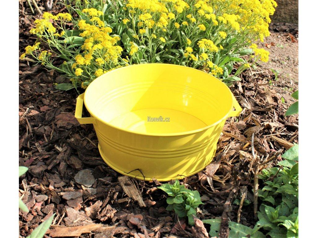 Rendlík 26 žlutý