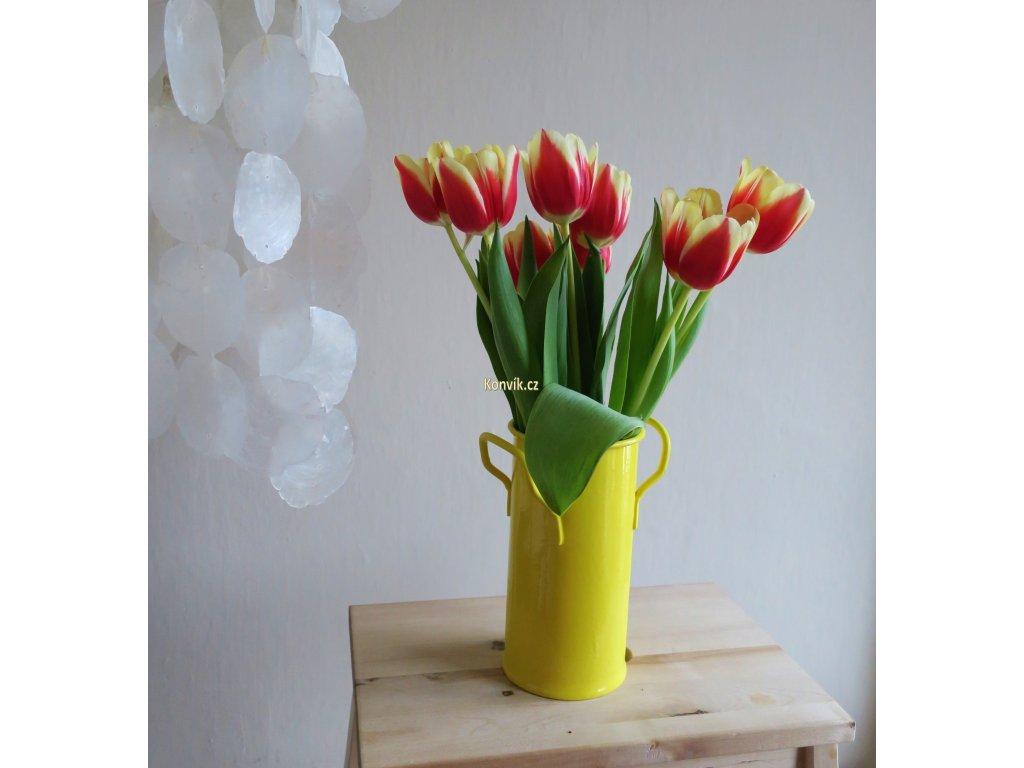 Váza malá žlutá ucha květiny