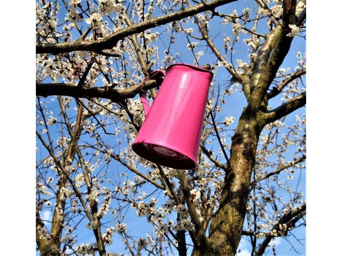 Džbán růžový strom