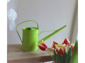 Konvička zelenkavá